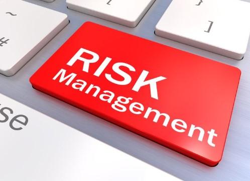 Jenis-Jenis Manajemen Risiko