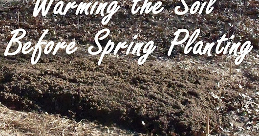 Warming the Soil Before Planting