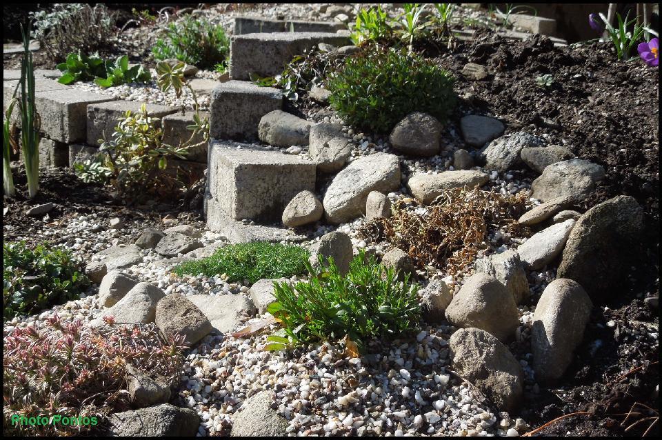 Un giardino di perenni in ticino tre settimane di ritardo for Piante da aiuola