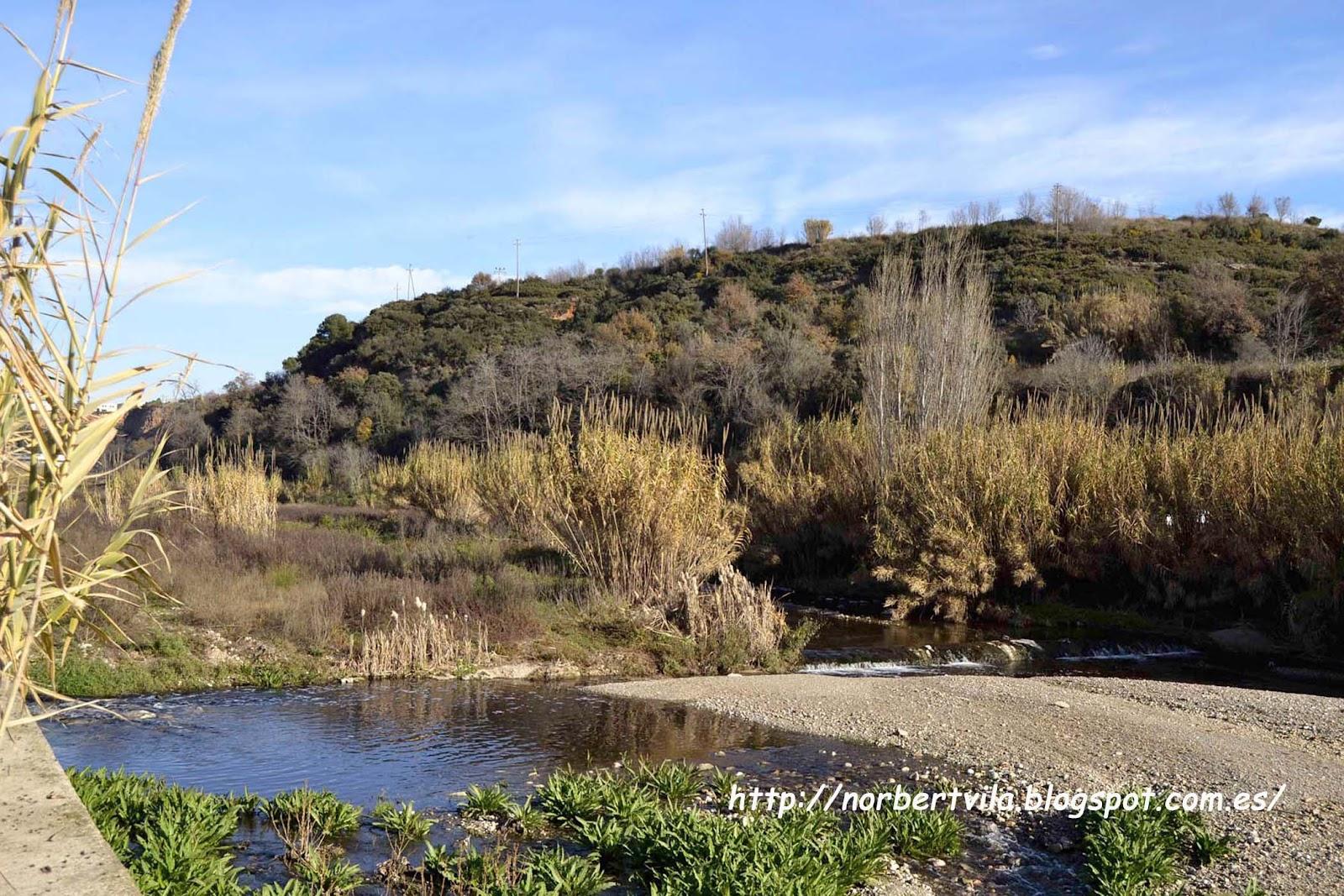 Espais de sabadell riu ripoll for Piscina municipal ripoll