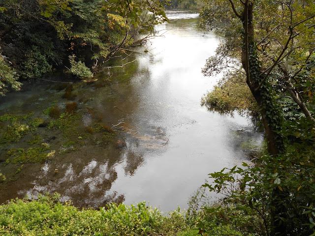湧水の流れがつくる小川