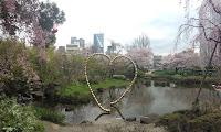 Mori Garden cherry blossom
