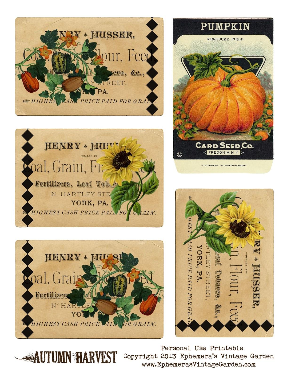 Ephemera S Vintage Garden Free Weekly Printable