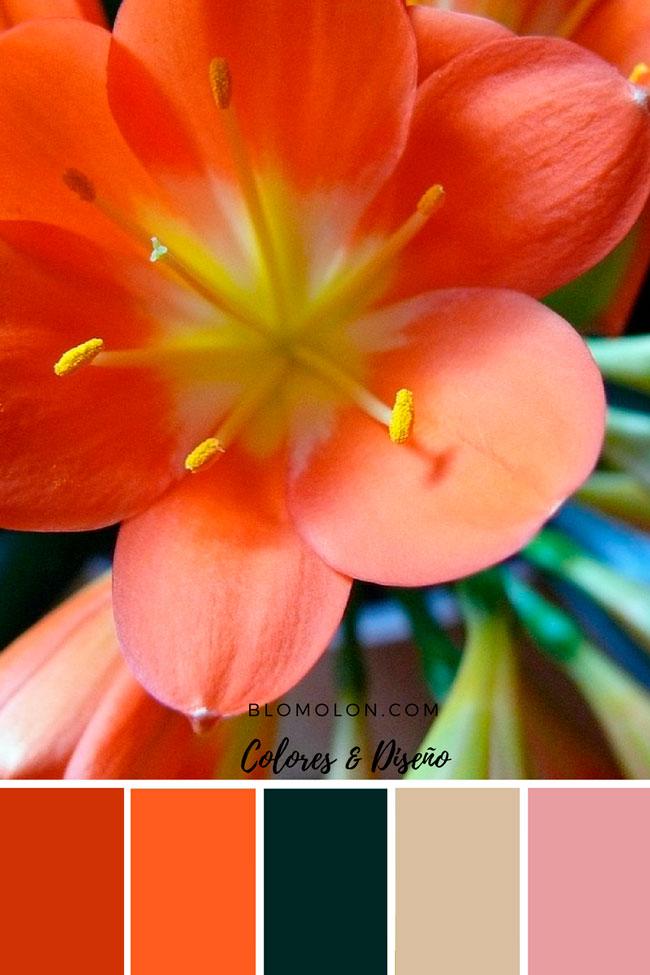 paletas_de_colores_canva_1