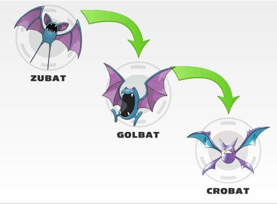 Nama -Nama pokemon Karakter - Kumpulan Foto Zubat dan Evolusinya