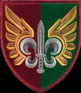 нарукавна емблема 132-го розвідувального батальйону ДШВ