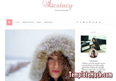 estacy blogger template