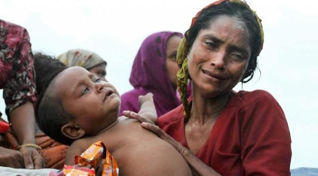 penderitaan muslim rohingya