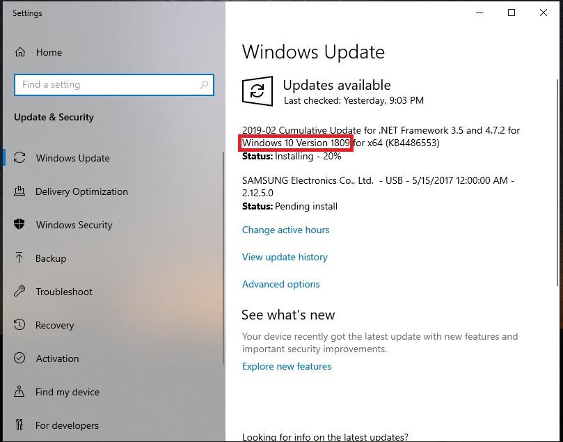windows 10 version 1809 manual download