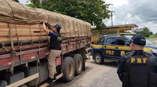 Caminhoneiro realizando transporte ilegal de mandeira