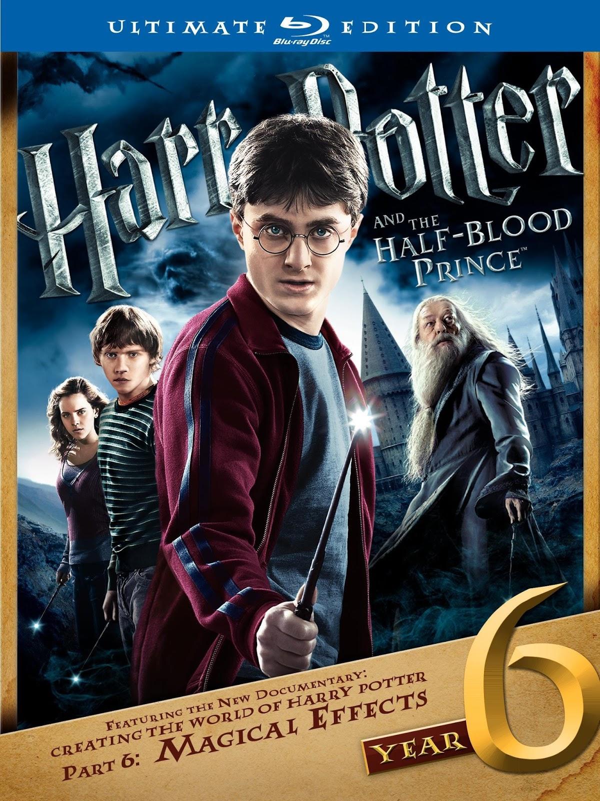 Harry Potter and the Half-Blood Prince 2009 480p 350MB Blu-Ray Hindi Dubbed Dual Audio [Hindi - English] MKV