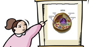 Blog de Comunicación 3 Grado Primaria: ¡A EXPONER