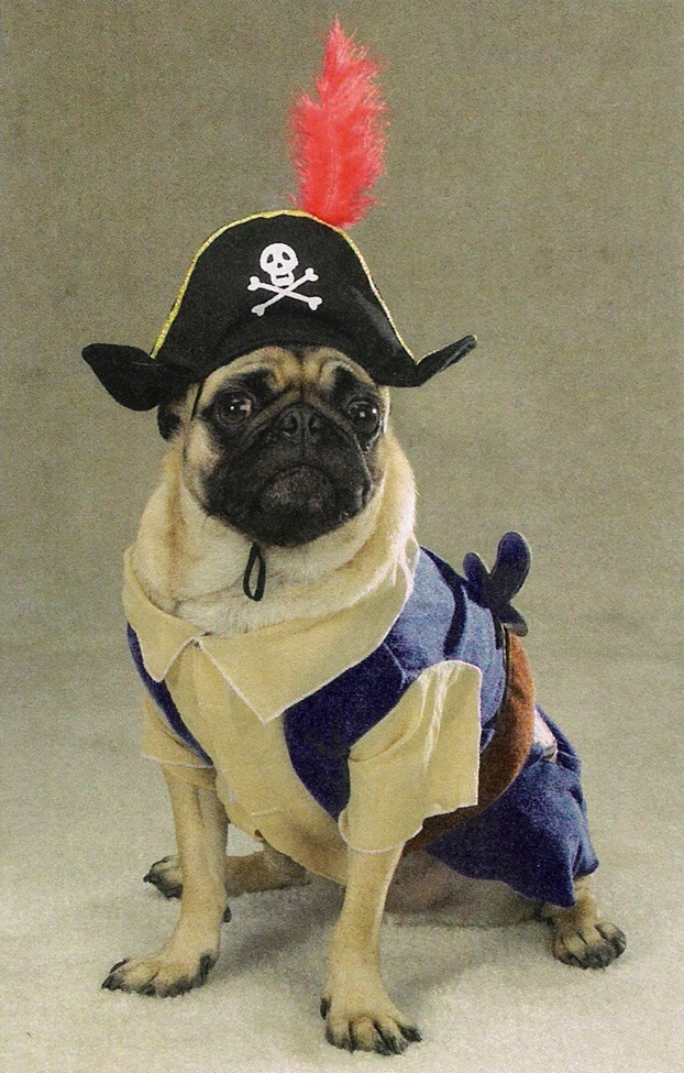 Dog Clothing Dog Clothes Accessories Dog Costumes Pet Halloween Costumes Halloween Costumes