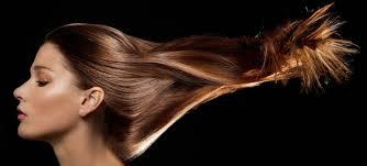 02a3534f387b9 شعرك تاج جمالك .. كثيرا مانرى نساء يتمتعن ببشره صافيه او قوام رشيق ولكن  القليل جدا منهن يتمتعن بشعر صحي ذو لمعه جذابه .. وتدل على عنايه صاحبته ان  امراه تحمل ...