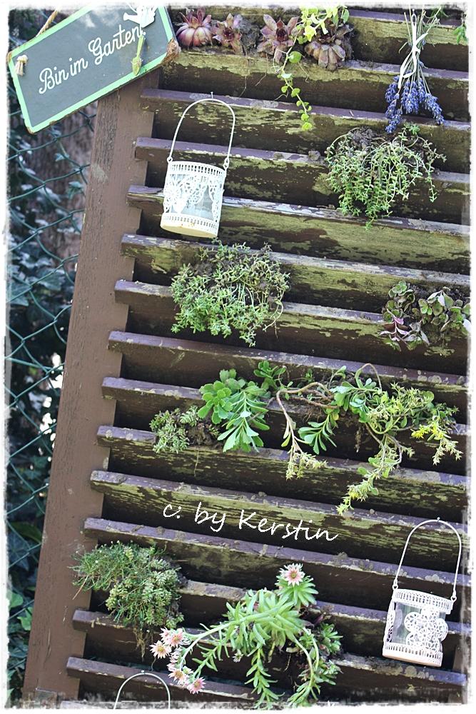Barbel Bloggt Diy Ein Bepflanzter Fensterladen