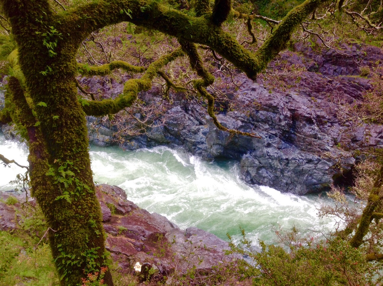Smith River gorge near Hiouchi, California