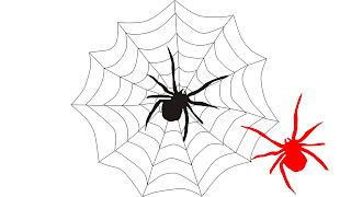 Juego Pon la araña a la telaraña