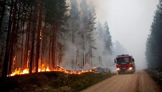 Sweden struggles to contain wildfires