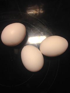 Eierfund: Das Kind hat Eier gefunden