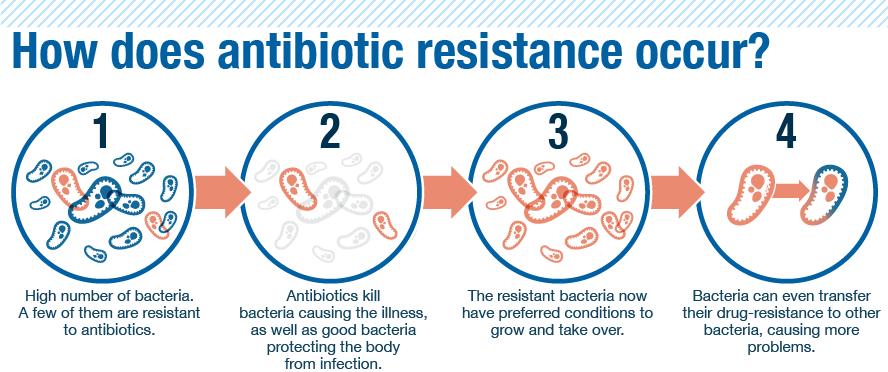 resistencia-bacteriana-como-ocorre
