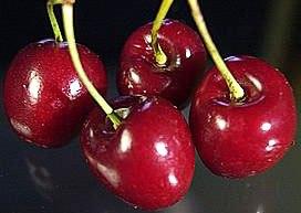 Foto de cerezas muy ricas