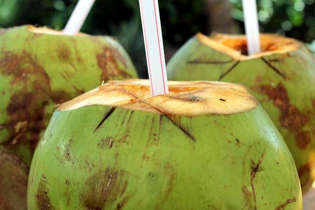 Khasiat air kelapa hijau untuk kesehatan