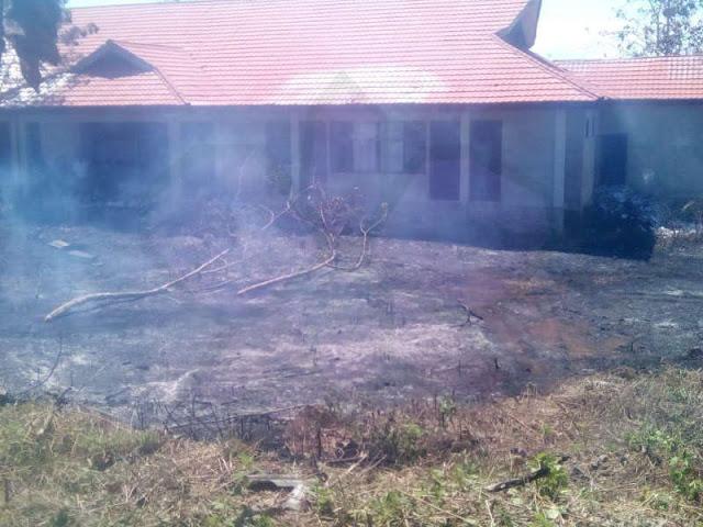 Damkar Padamkan Kebakaran Lahan Dekat Kantor Lama Pertanahan di Olilit