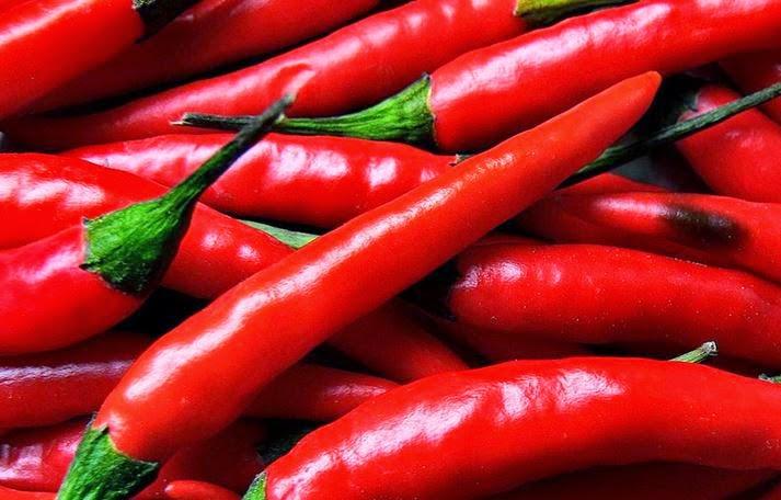 50 Makanan Sehat untuk Anemia Ringan dan Berat