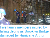 http://sciencythoughts.blogspot.co.uk/2014/07/five-family-members-injured-by-falling.html
