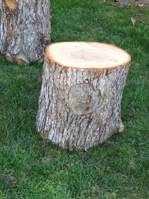 Sew Many Ways Turn Tree Stumps Into Fire Pit Seating