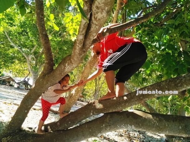 naik pohon di pantai bagoes