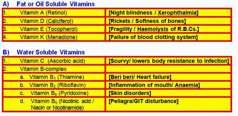 Vitamins definition and types women boot camp milton fl ...
