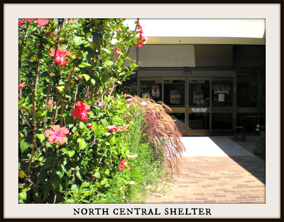 North Central Shelter Los Angeles
