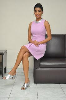 anisha ambrose okkadu migiladu interview stills 05