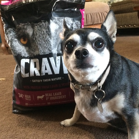 #Crave Grain Free Dog Food | #chewyinfluencer