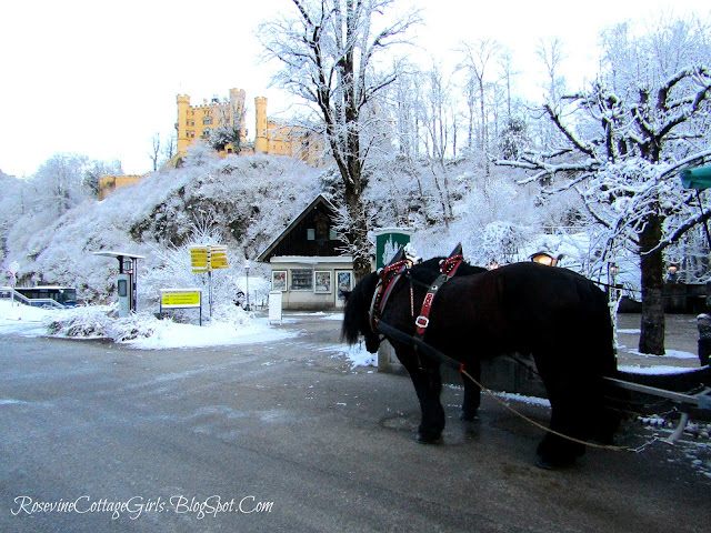 Horse drawn carriage sleeping beauty's castle