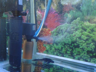 filter aquarium murah