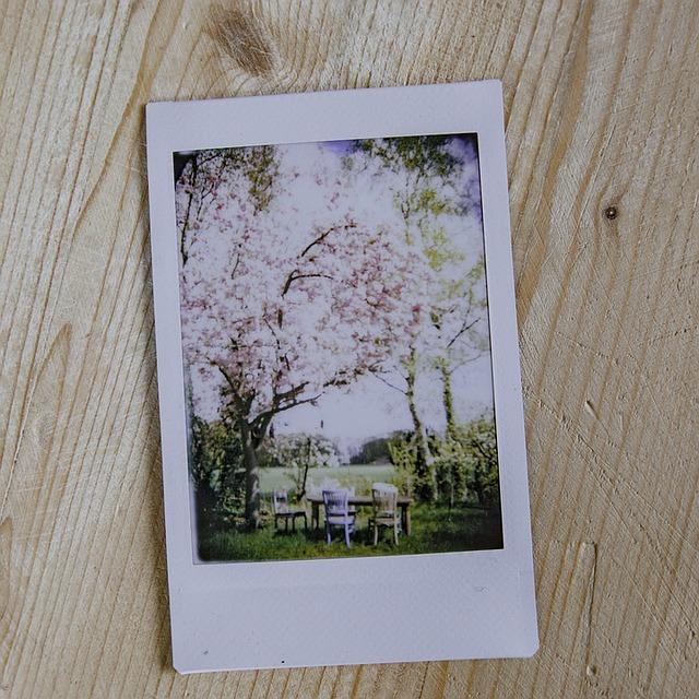 tips cetak foto