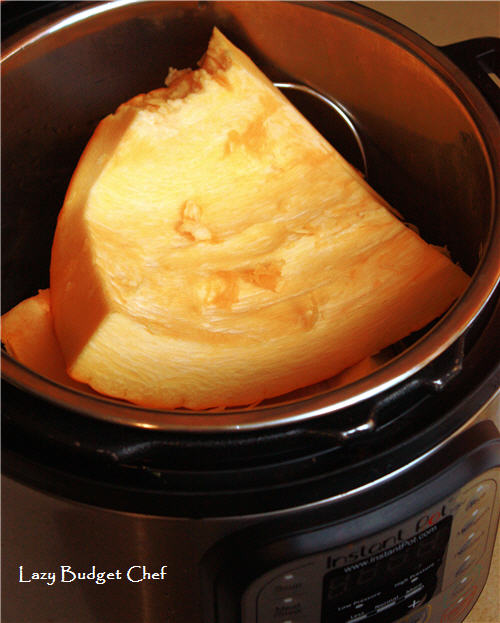 quick and easy pumpkin Instant Pot recipe