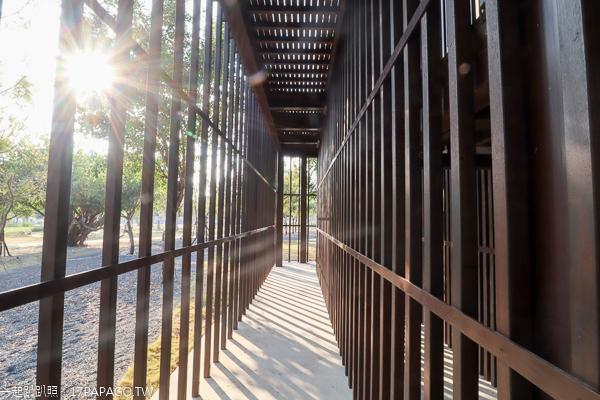 中央公園|台中西屯水湳智慧城|12感官體驗區|67公頃台中之肺特色公園