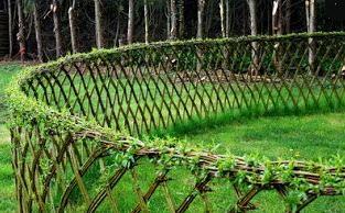 Jardins vivants: La flore