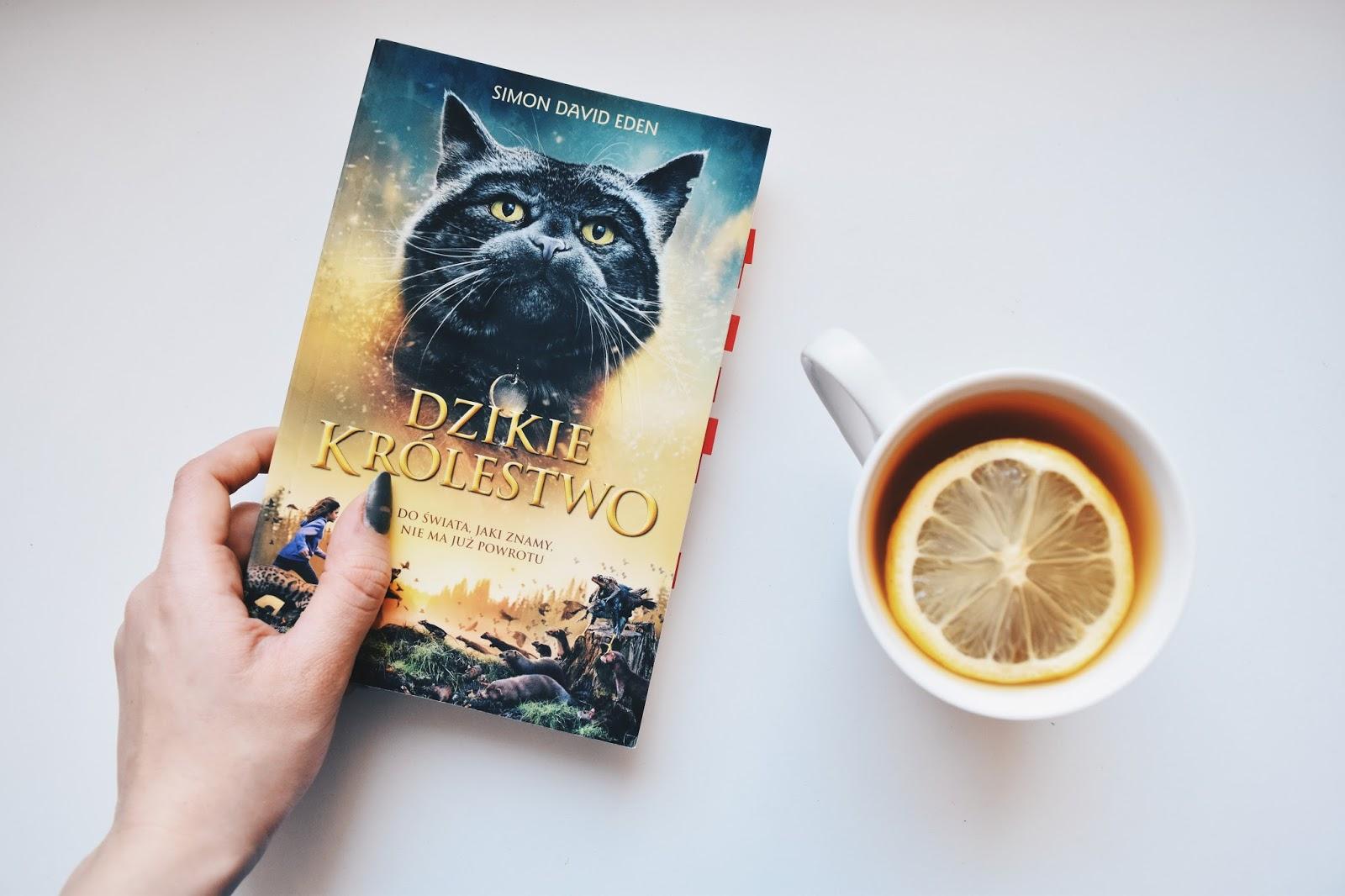 Dzikie królestwo, książka, herbata, recenzja, Simon Eden, książka o kotach, książka o zwierzętach