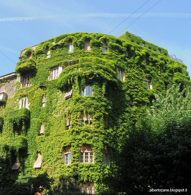 casa verde in via vaina