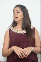 Nikki Galrani in a Brown Shining Sleeveless Gown at Nakshatram music launch ~  Exclusive 045.JPG