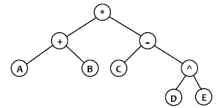 cây nhị thức