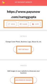 customize payment website