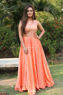 Actress Sakshi in beautiful orange Anarkali Dress Spicy Pics    038.jpg