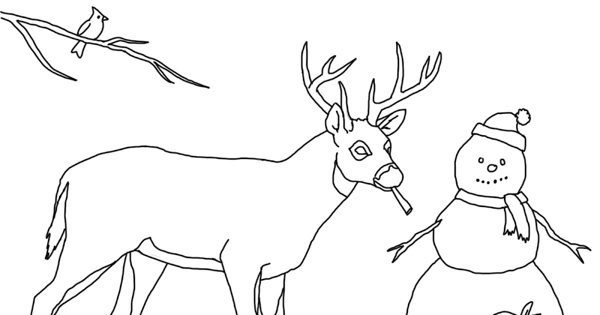 Forest Wildlife Art: Coloring Book Page for Kids
