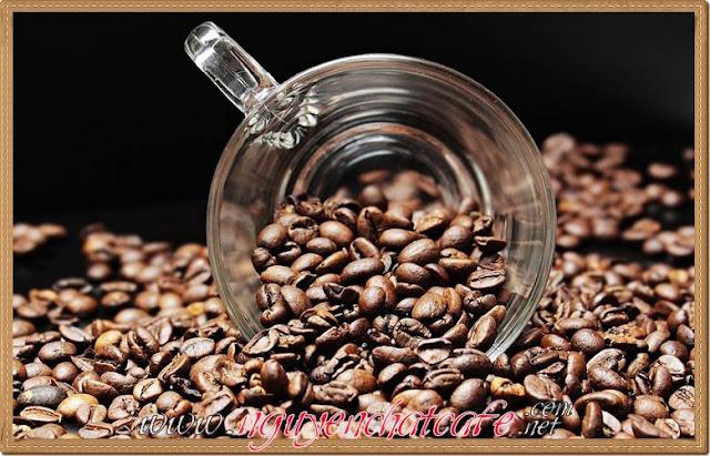 Lợi ích sức khoẻ # 18: Cà phê có đầy đủ chất dinh dưỡng quan trọng