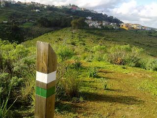 Camino Real del Pino